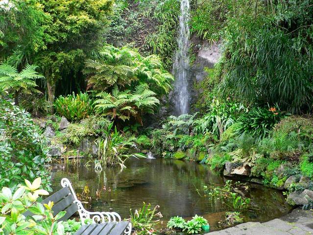 Eden Gardens Epsom Auckland New Zealand Idyllic