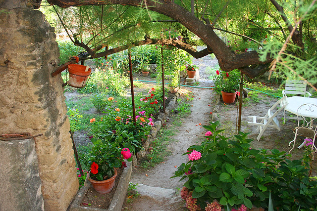 Petit jardin de provence flickr photo sharing - Jardin de provence ...