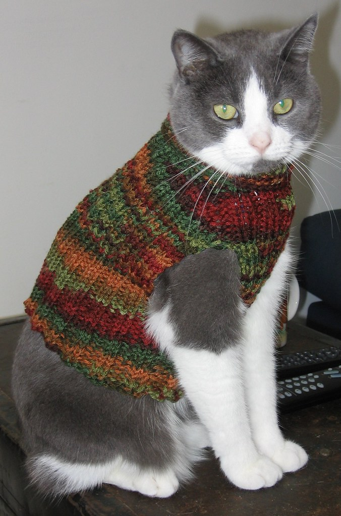Único Cat Sweater Knitting Pattern Inspiración - Manta de Tejer ...
