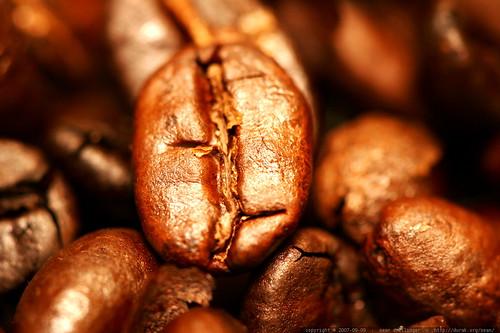 home roasted coffee beans   ethiopian harar horse lot 14659    MG 4096