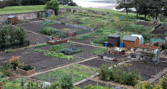 Header of Allotments