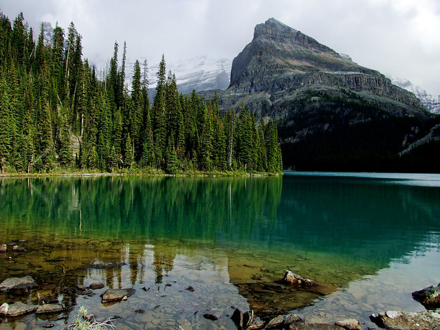 Lake O'Hara | Yukness Mountain