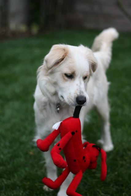 Cidney with her Clifford Toy