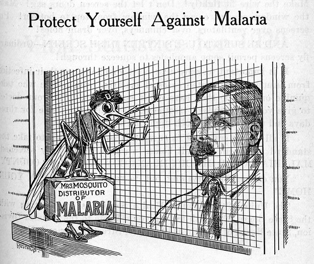Mrs. Mosquito Distributor of Malaria