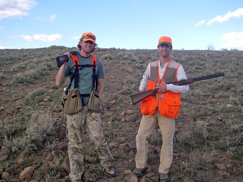 A great sage grouse hunt utah wildlife network for Arizona fishing license for seniors