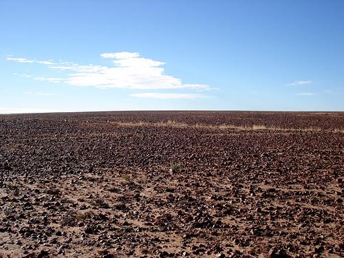 Sturt Stony Desert again