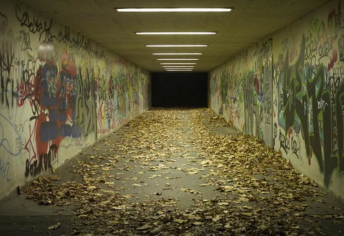 Autumn in the tunnel