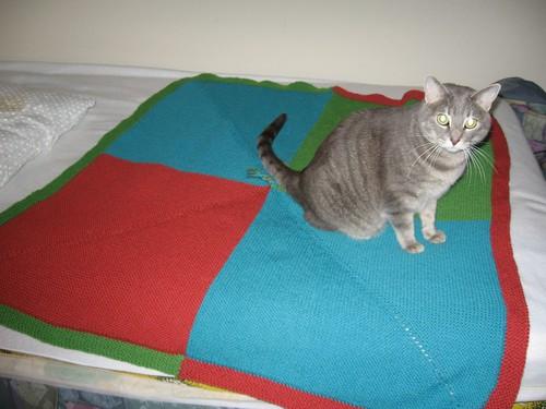 EZ Baby Blanket