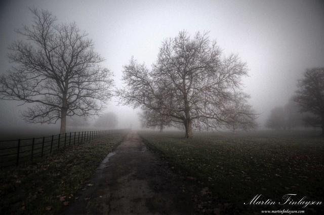Wimpole Mists