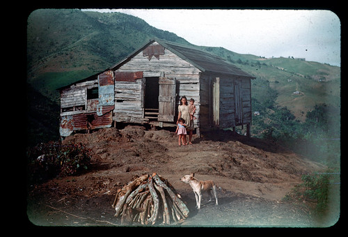 Woman with two children in front of house, dog and firewood | by t13hman