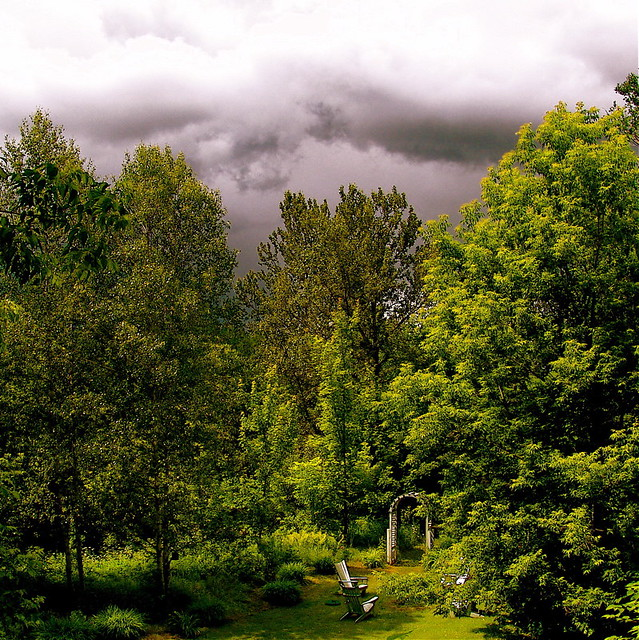 A heavy sky with foreboding on my garden!