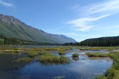 Whitehorse Creek
