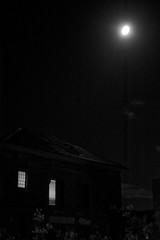 USYD Rozelle - Moonlight
