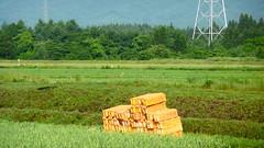 Aomori Countryside