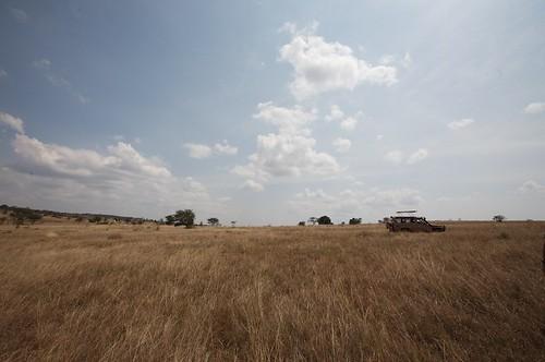 africa places rwanda countries subsaharanafrica akageranationalpark continentsregion
