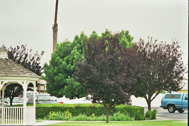 Palo Verde Avenue Christian Church Long Beach California Flickr Photo Sharing
