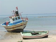 fishing(0.0), watercraft rowing(0.0), bay(0.0), long-tail boat(0.0), fishing vessel(0.0), fisherman(0.0), beach(1.0), vehicle(1.0), sea(1.0), boating(1.0), fishing trawler(1.0), shore(1.0), watercraft(1.0), coast(1.0), boat(1.0),