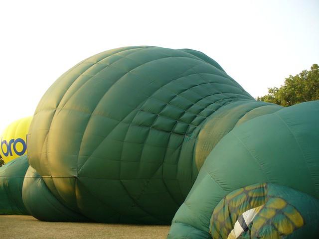 t rex balloon machine