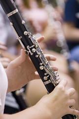 plucked string instruments(0.0), string instrument(0.0), reed instrument(1.0), western concert flute(1.0), clarinet(1.0), wind instrument(1.0),