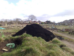 A load of compost