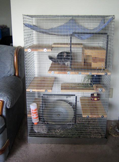 chinchilla cage - photo #36