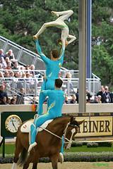 animal sports(1.0), equestrian sport(1.0), sports(1.0), equestrian vaulting(1.0),