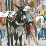 Leadville Burro Race