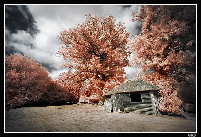 Enchanted House II