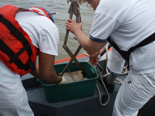 NOAA Mussel Watch: Collecting Sediment for Analysis