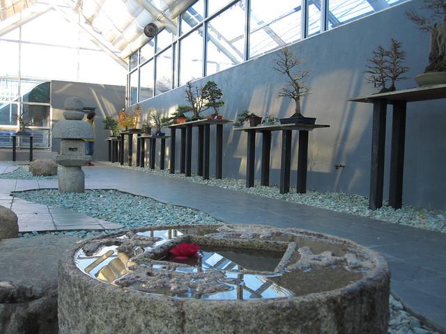The C.V. Starr Bonsai Museum. Photo by Rebecca Bullene.