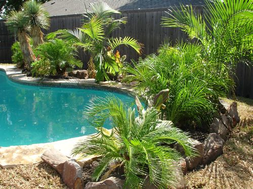 Our Flip: Backyard Oasis