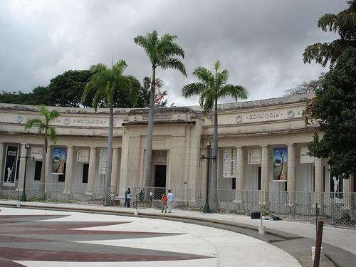 museums in caracas