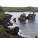 2007-01-27: Maui: Part 3: Hana