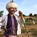 Shepherd in the Field by mitchellk81