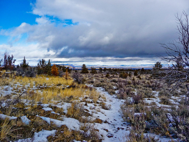 Winter Day - Whitney Butte Trail, Lava Beds National Monument