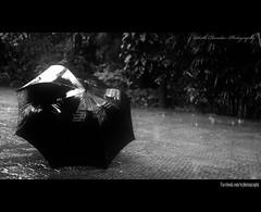 Its a rainy day..