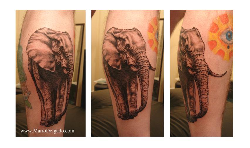 Starter tattoo kits tribal tattoo designs for Starter tattoo kits