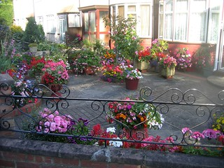 Another front garden in Isleworth 009