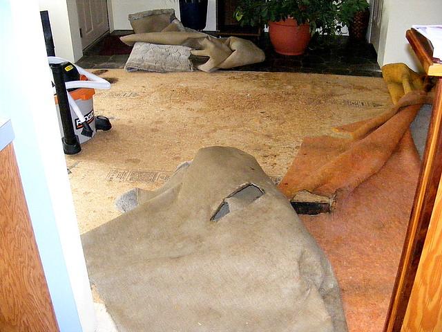 Bye bye old carpet.