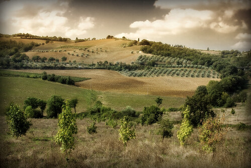 Toscana, Firenze, Pisa, maremma