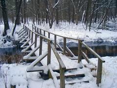 The Bridge at Mt Morris