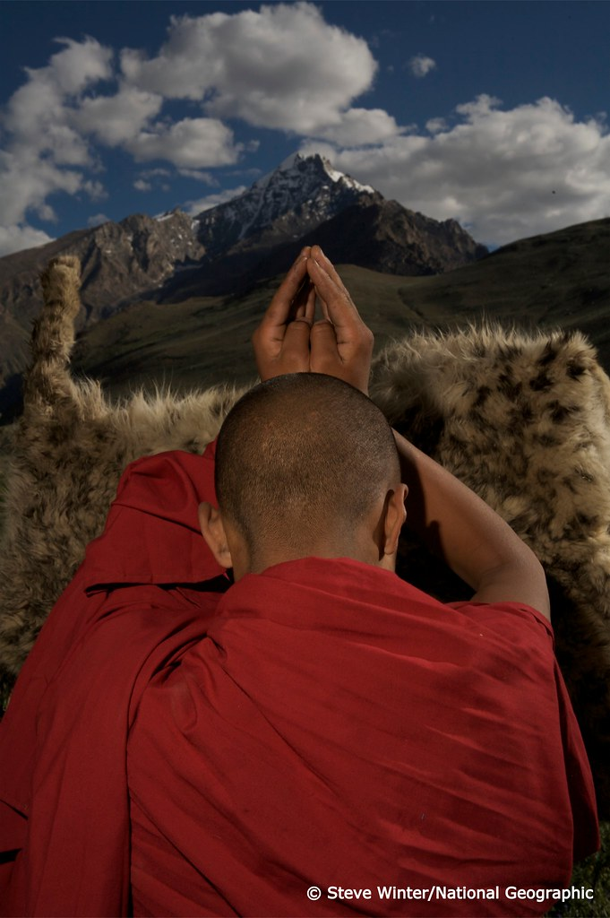 Monk praying respectfully on snow leopard skin