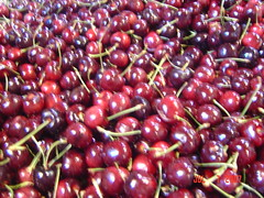pink peppercorn(0.0), acerola(0.0), flower(0.0), plant(0.0), cranberry(0.0), rose hip(0.0), zante currant(0.0), lingonberry(0.0), cherry(1.0), berry(1.0), produce(1.0), fruit(1.0), food(1.0),