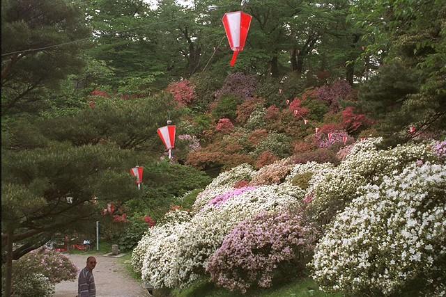Akita castle park