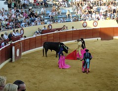 fair(0.0), performance(0.0), animal sports(1.0), cattle-like mammal(1.0), bull(1.0), event(1.0), tradition(1.0), sports(1.0), bullring(1.0), performing arts(1.0), entertainment(1.0), matador(1.0), bullfighting(1.0),