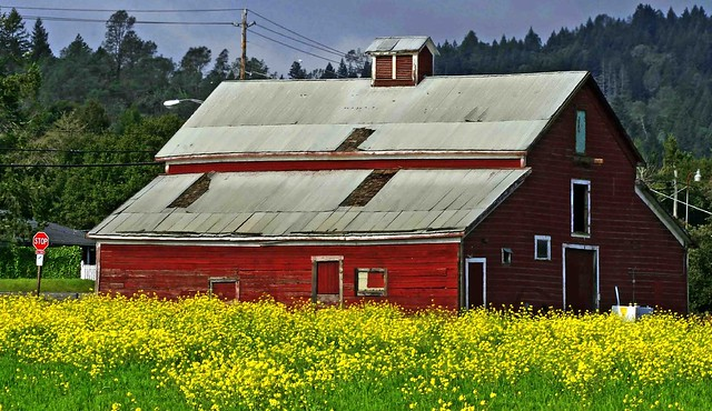 Sonoma county barn flickr photo sharing for Sonoma barn
