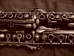 flute(0.0), plucked string instruments(0.0), string instrument(0.0), reed instrument(0.0), trumpet(0.0), western concert flute(0.0), firearm(0.0), guitar(0.0), bass guitar(0.0), wind instrument(0.0), musical instrument(1.0), clarinet(1.0), monochrome(1.0),