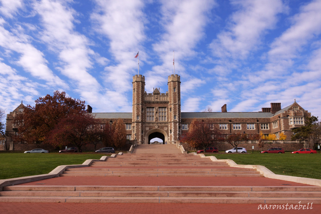 st. louis university application essay Avoid these big college application mistakes  washington university in st louis  if you write an essay for a university, and then you write that essay again and it's just a matter of.
