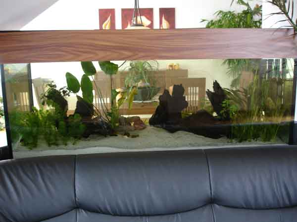 am anfang war der platz oder mein neues becken aquarium. Black Bedroom Furniture Sets. Home Design Ideas
