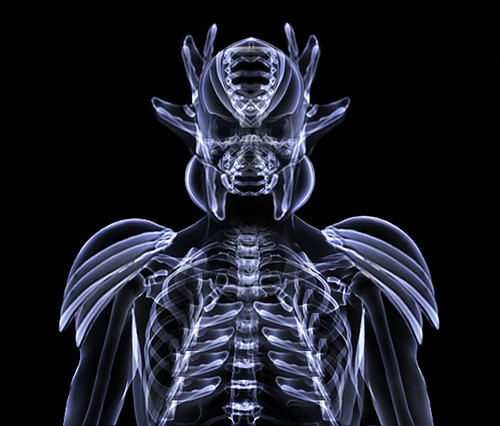 Alien From X-ray
